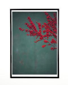 Floral photography, Norph Prints for home, Fabrikanterne vejle midtpunkt